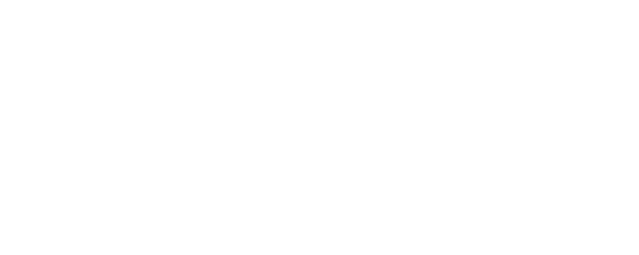 The Archivers Academy